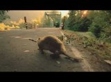 Bridgestone - Beaver-Super Bowl Commercial
