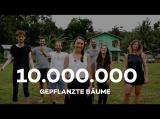 10 Millionen Bäume mit Ecosia gepflanzt