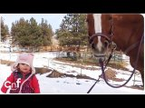Emma and Cinnamon | Little Girl and Horse Are Best Friends