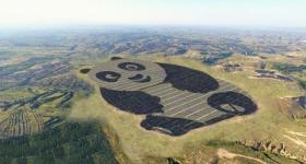 China Launches The World's Cutest Solar Farm Shaped Like A Panda