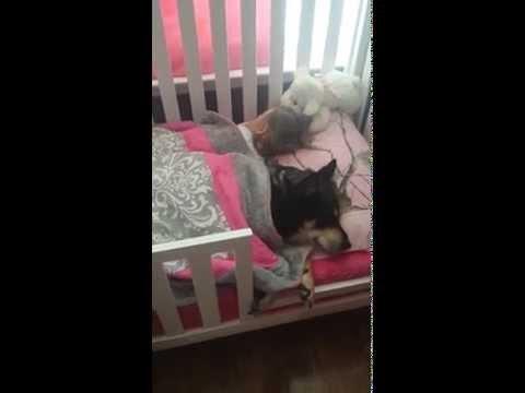 Mama findet ihr Baby und ihren Hund schlafend im Bett